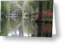 Magnolia Plantation Gardens Series II Greeting Card