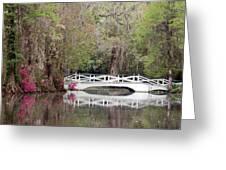 Magnolia Plantation Gardens Series IIi Greeting Card