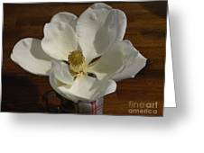 Magnolia Still 1 Greeting Card