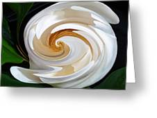 Magnolia Study No 1 Greeting Card