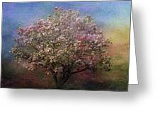 Magnolia Tree In Bloom Greeting Card