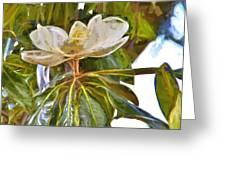 Magnolia White Greeting Card