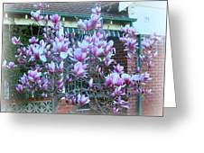 Magnolias At Home Greeting Card