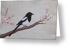 Magpie On Cherryblossm Tree Greeting Card