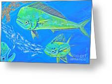 Mahi Trio Greeting Card