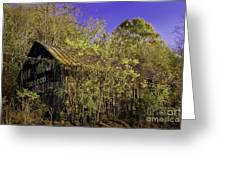 Mail Pouch Barn-0107 Greeting Card