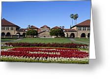 Main Quad Stanford California Greeting Card