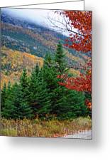 maine 57 Baxter State Park Loop Road Fall Foliage Greeting Card