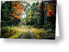 Maine Back Road Greeting Card
