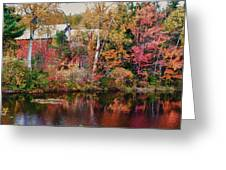 Maine Barn Through The Trees Greeting Card by Jeff Folger