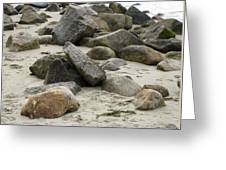 Maine Beach Rocks Greeting Card