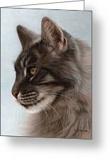 Maine Coon Painting Greeting Card