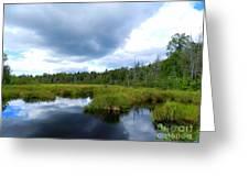 Maine Pond Greeting Card