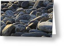 Maine Rocks 1 Greeting Card
