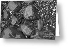 Maine Stones Greeting Card