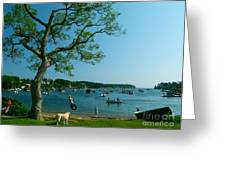 Maine Summer Day At Mackerel Cove   Greeting Card