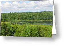 Mainely Green Greeting Card
