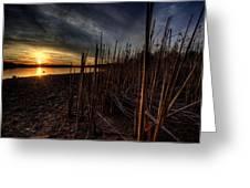 Majestic Lake Sunset Greeting Card