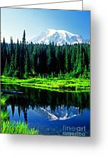 Majestic View 2 Greeting Card