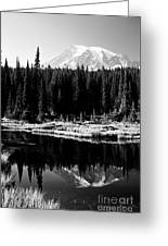 Majestic View 2bw Greeting Card