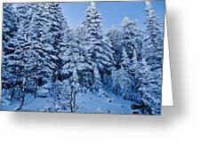 Majestic Winter Wonderland Greeting Card