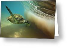 Makena Surfer Greeting Card