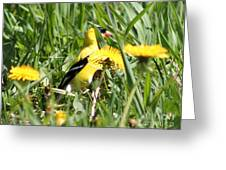 Male American Goldfinch Camouflage Greeting Card