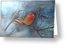 Male Housefinch With Verse Greeting Card