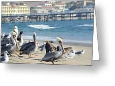 Malibu Hot Spot Greeting Card