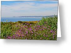 Malibu Greeting Card