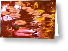Mallard Duck On Pond 3 Square Greeting Card