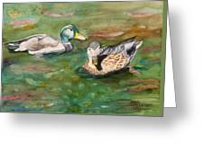 Mallard Ducks With Spawning Salmon Greeting Card