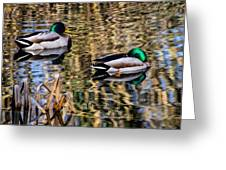Mallards In The Reeds Greeting Card