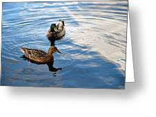 Mallards Lake Hopatcong Nj Greeting Card