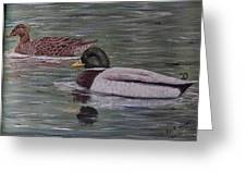 Mallards On Holloway Cove Greeting Card