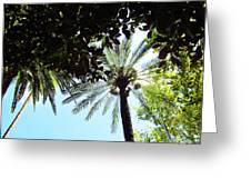 Mallorca Dates Three Greeting Card