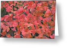 Mallow Ninebark Fall Greeting Card