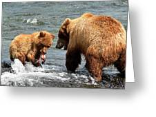 Mama And Baby Grizzly Bear At The Falls Greeting Card