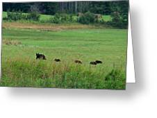 Mama Bear And 4 Cubs Greeting Card