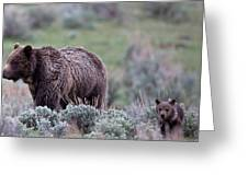 Mama Grizzly Guiding Cub Greeting Card