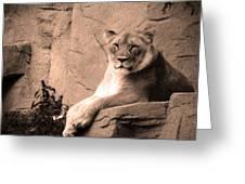 Mama Lion Greeting Card