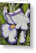 Mama's Favorite Iris Greeting Card