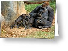 Mama's Little Babies Greeting Card