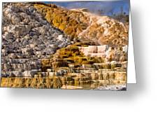 Mammoth Hot Spring Greeting Card