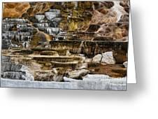 Mammoth Hot Springs - Yellowstone Greeting Card