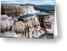 Mammoth Hot Springs Yellowstone Np Greeting Card