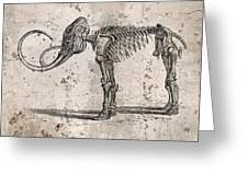 Mammoth Skeleton Greeting Card