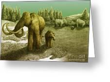 Mammoths Greeting Card