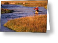 Man Fly Fishing On The Owens River Greeting Card