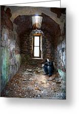 Man In Abandoned Building Greeting Card